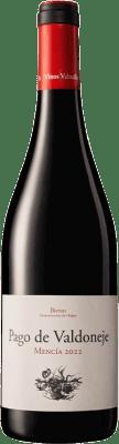 11,95 € Envío gratis | Vino tinto Valtuille Pago de Valdoneje Roble D.O. Bierzo Castilla y León España Mencía Botella 75 cl