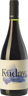 21,95 € Free Shipping | Red wine Vintae Chile Küdaw Nativo Carignan Crianza I.G. Valle Central Central Valley Chile Carignan Bottle 75 cl