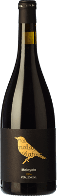 15,95 € Kostenloser Versand | Rotwein Viña Zorzal Malayeto Joven D.O. Navarra Navarra Spanien Grenache Flasche 75 cl