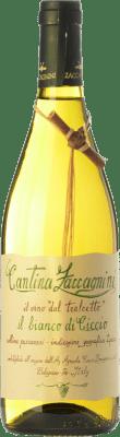 9,95 € Kostenloser Versand | Weißwein Zaccagnini Il Bianco di Ciccio dal Tralcetto D.O.C. Abruzzo Abruzzen Italien Trebbiano, Chardonnay Flasche 75 cl