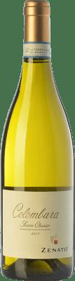 8,95 € Envío gratis | Vino blanco Zenato Colombara D.O.C.G. Soave Classico Veneto Italia Chardonnay, Garganega Botella 75 cl