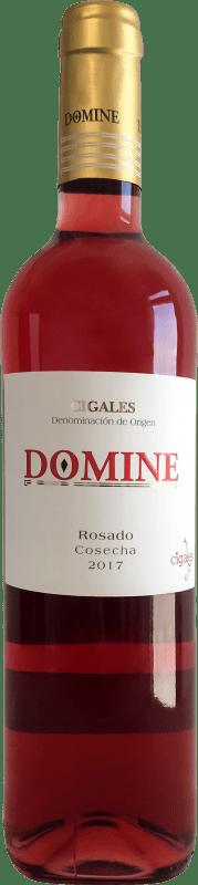6,95 € Spedizione Gratuita | Vino rosato Thesaurus Domine Joven D.O. Cigales Castilla y León Spagna Tempranillo Bottiglia 75 cl
