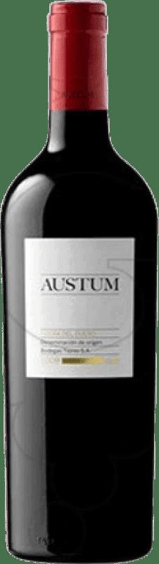 19,95 € Free Shipping | Red wine Tionio Austum D.O. Ribera del Duero Castilla y León Spain Tempranillo Magnum Bottle 1,5 L