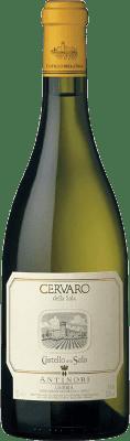 62,95 € Free Shipping | White wine Castello della Sala Antinori Cervaro Crianza Otras D.O.C. Italia Italy Chardonnay, Greco Bottle 75 cl