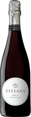 13,95 € Free Shipping | White sparkling Parxet Titiana Brut Joven D.O. Cava Catalonia Spain Pansa Blanca Bottle 75 cl | Thousands of wine lovers trust us to get the best price guarantee, free shipping always and hassle-free shopping and returns.