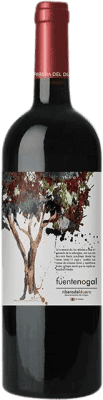 8,95 € Envoi gratuit | Vin rouge Solterra Fuente Nogal Joven D.O. Ribera del Duero Espagne Tempranillo Bouteille 75 cl
