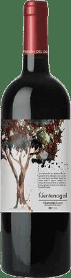 5,95 € Spedizione Gratuita | Vino rosso Solterra Fuente Nogal Joven D.O. Ribera del Duero Spagna Tempranillo Bottiglia 75 cl | Migliaia di amanti del vino si fidano di noi con la garanzia del miglior prezzo, spedizione sempre gratuita e acquisti e ritorni senza complicazioni.