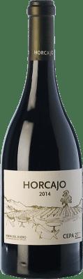 66,95 € Kostenloser Versand | Rotwein Cepa 21 Horcajo D.O. Ribera del Duero Kastilien und León Spanien Tempranillo Flasche 75 cl