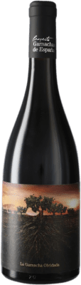 9,95 € Free Shipping   Red wine Vintae Chile Olvidada de Aragón D.O. Calatayud Aragon Spain Grenache Bottle 75 cl