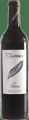16,95 € Free Shipping | Red wine Pérez Pascuas Viña Pedrosa Cepa Gavilán Crianza D.O. Ribera del Duero Castilla y León Spain Bottle 75 cl